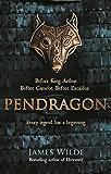 Pendragon: A Novel of the Dark Age (Dark Age 1)