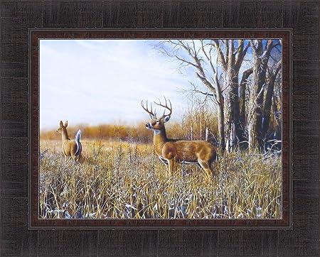 Breaking Cover by Jim Hansel 17×21 Whitetail Deer Buck Doe Field Framed Art Print Picture