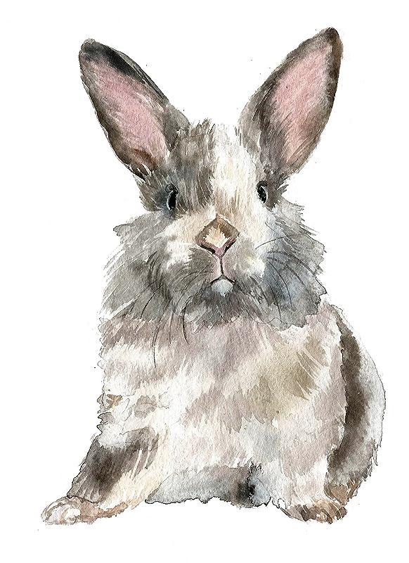 Amazon Com Rabbit Art A005 8x10 Rabbit Art Print Rabbit Painting Rabbit Pictures Baby Rabbit Print Wall Art Baby Room Decor Nursery Decor Kids Room Decor Handmade