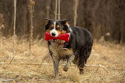 Hero Action Rubber Nub Bone Dog Toy