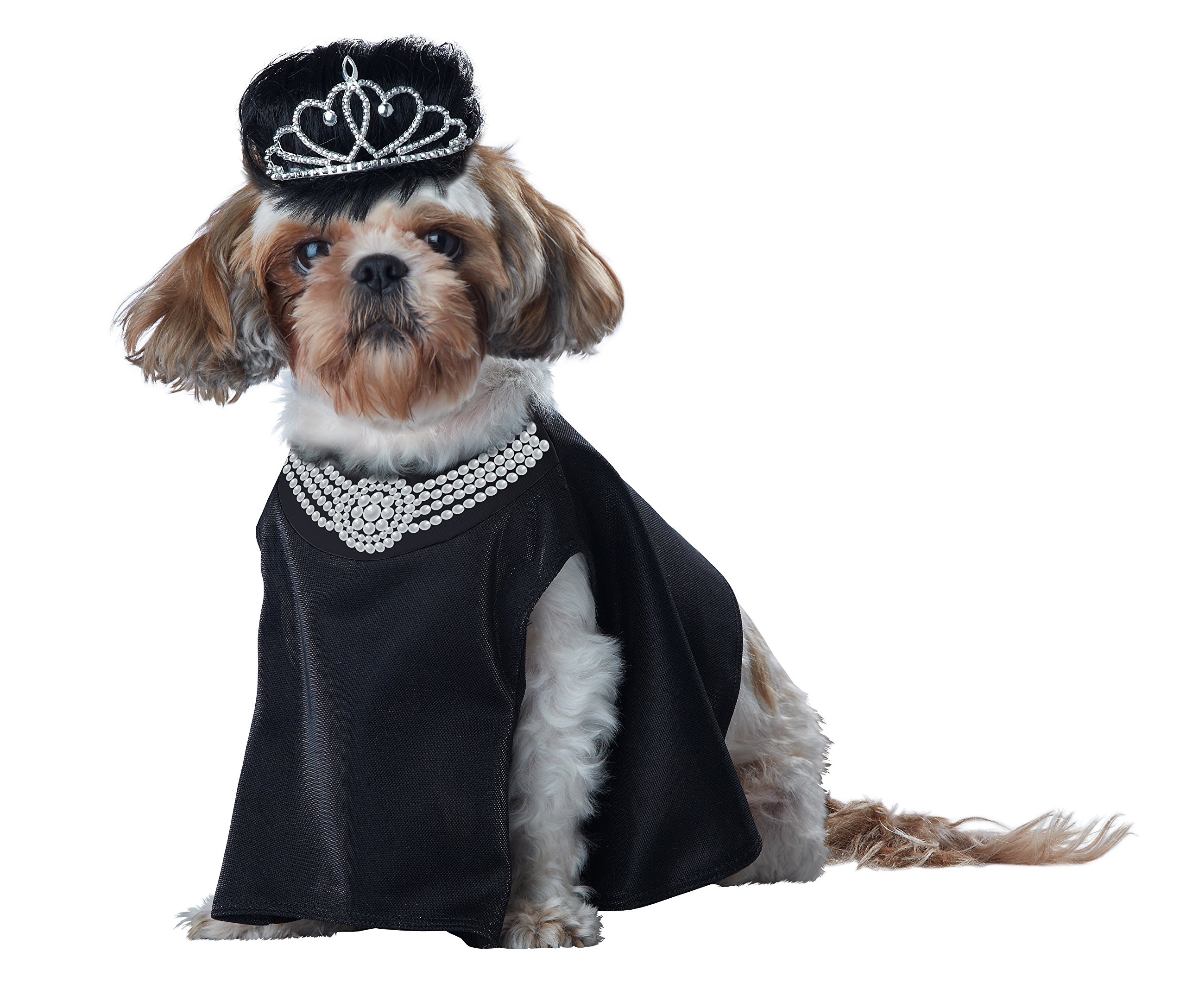 California Costume Collections Pup-A-Razzi Barkfest At Sniffany's Dog Costume, Black, Medium
