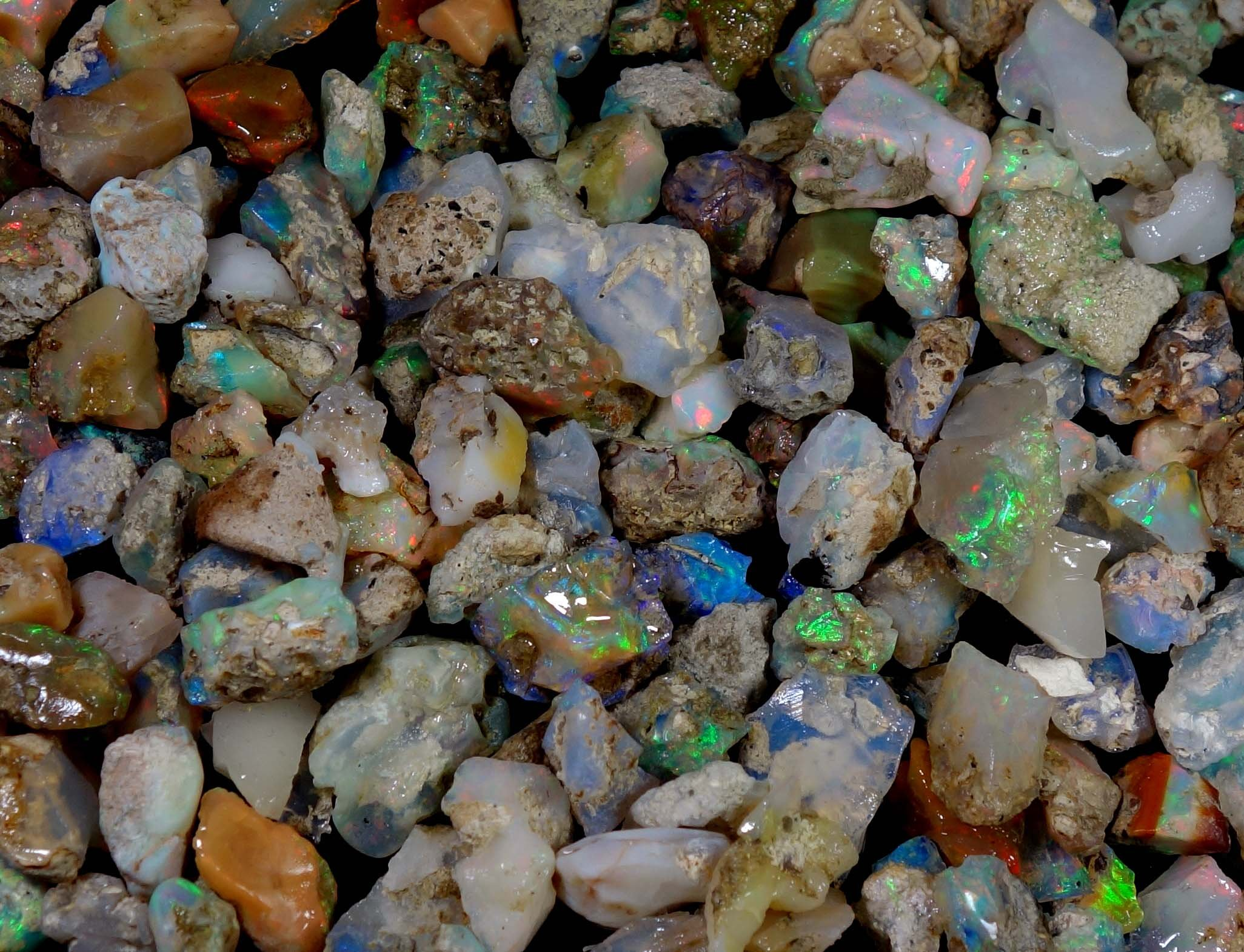 2000Cts. Natural Ethiopian Multi Color Opal Rough Wholesale Lot Gemstones