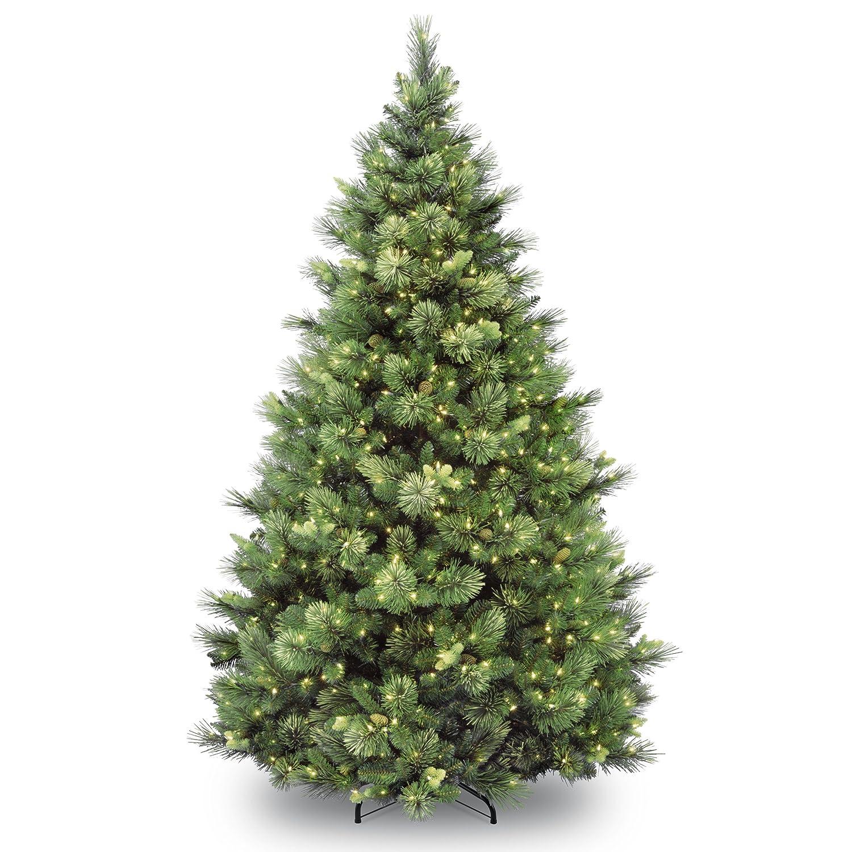 Carolina Pine Tree with Clear Lights National Tree 6.5 ft