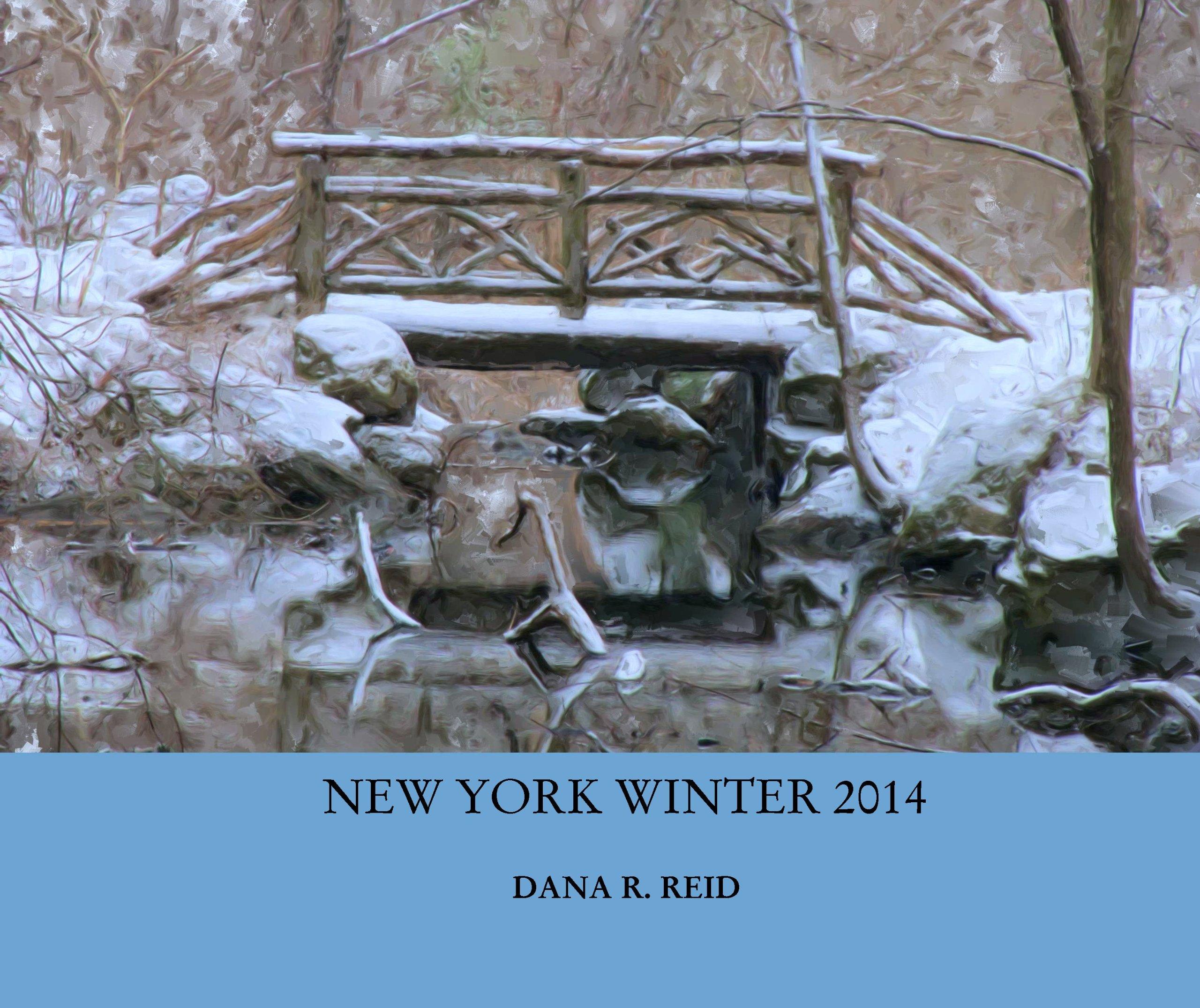 Download NEW YORK WINTER 2014 PDF