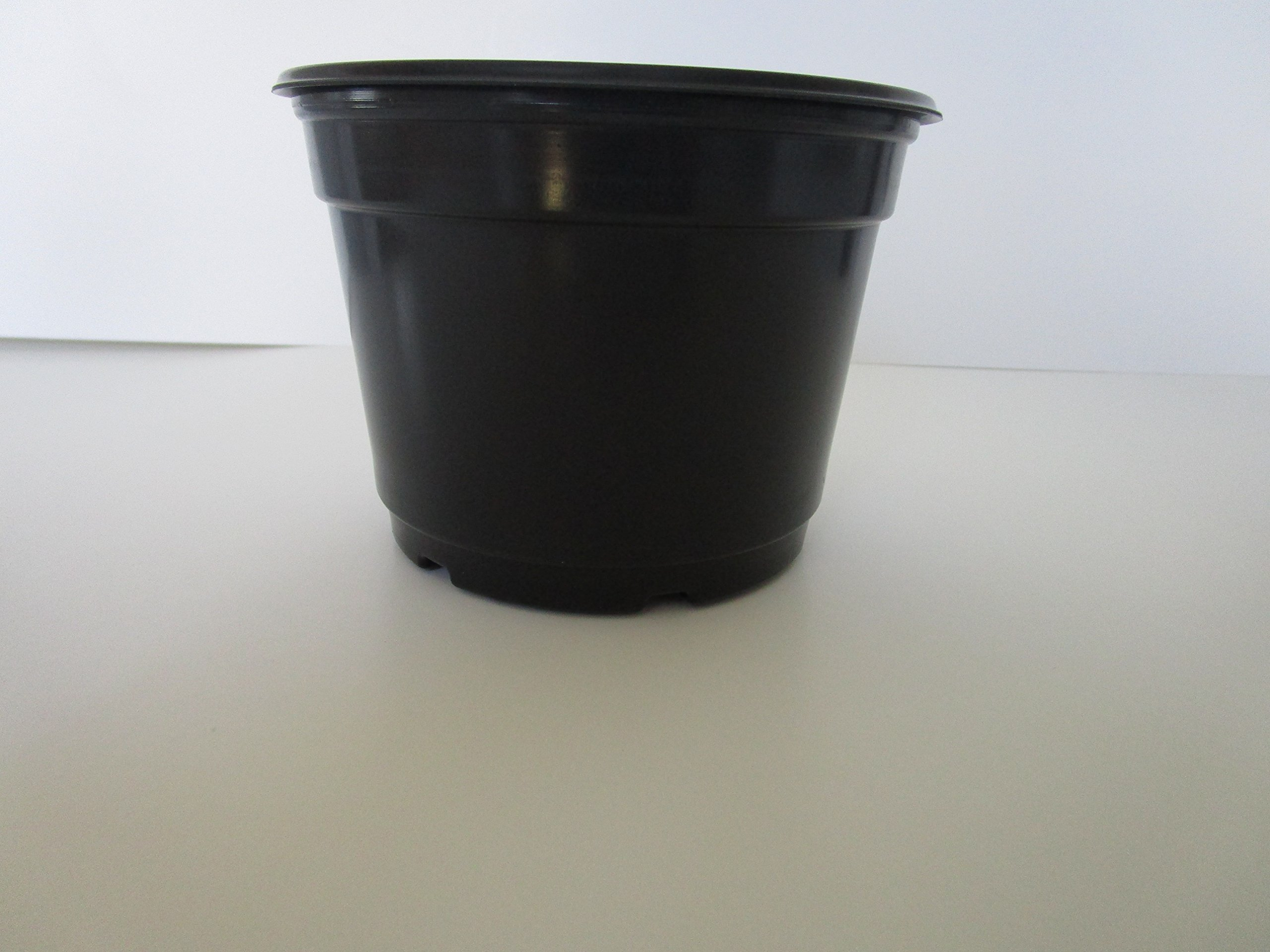 Landmark Plastics 5'' Diameter Black Plastic Nursery Pot by (50)