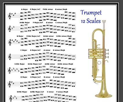 TRUMPET POSTER - 12 SCALES - EVERY NOTE IN ANY KEY !