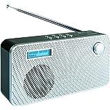 SCHWAIGER -081- Digital Radio DAB / DAB+, tragbar, mit Stab-Antenne und Wecker-Funktion, UKW & DAB Empfang, Betrieb via Netzteil oder Batterie und beleuchtetes LCD Display und automatischem Sendersuchlauf