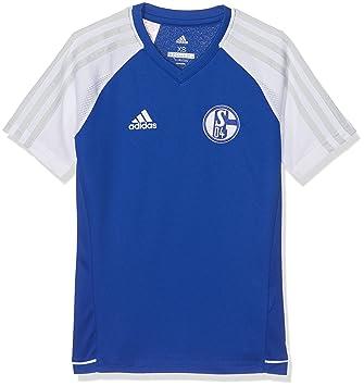 Adidas S04 TRG JSYY Camiseta FC Schalke 04, niños, Azul (azufue/Blanco), 140: Amazon.es: Deportes y aire libre