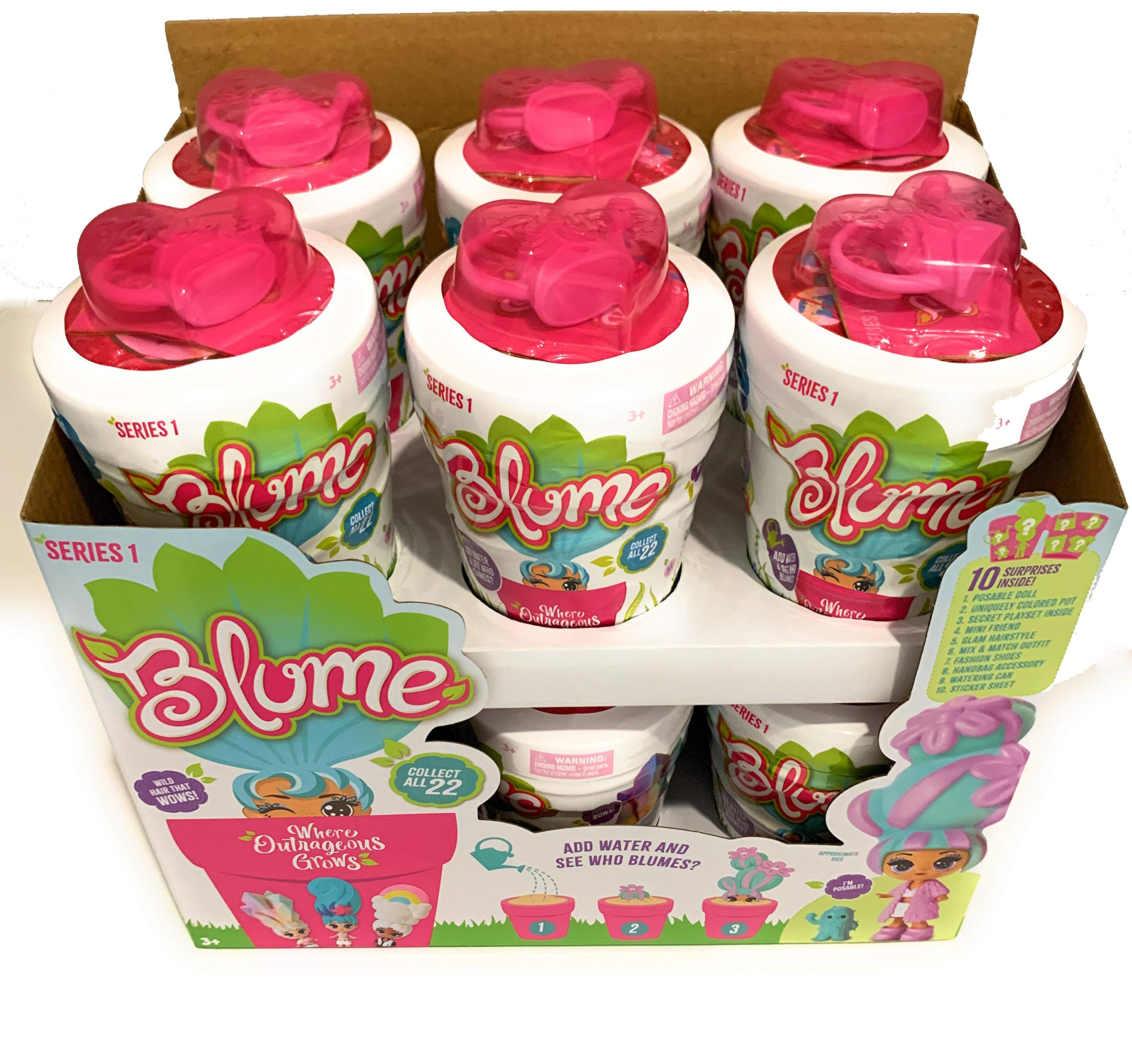 Blume Series 1 - New Friend Will Bloom Before Your Eyes! Full Case of 12 by Skyrocket