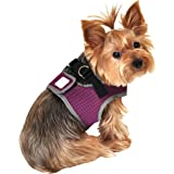 Wild Aster Reflective Body Harness