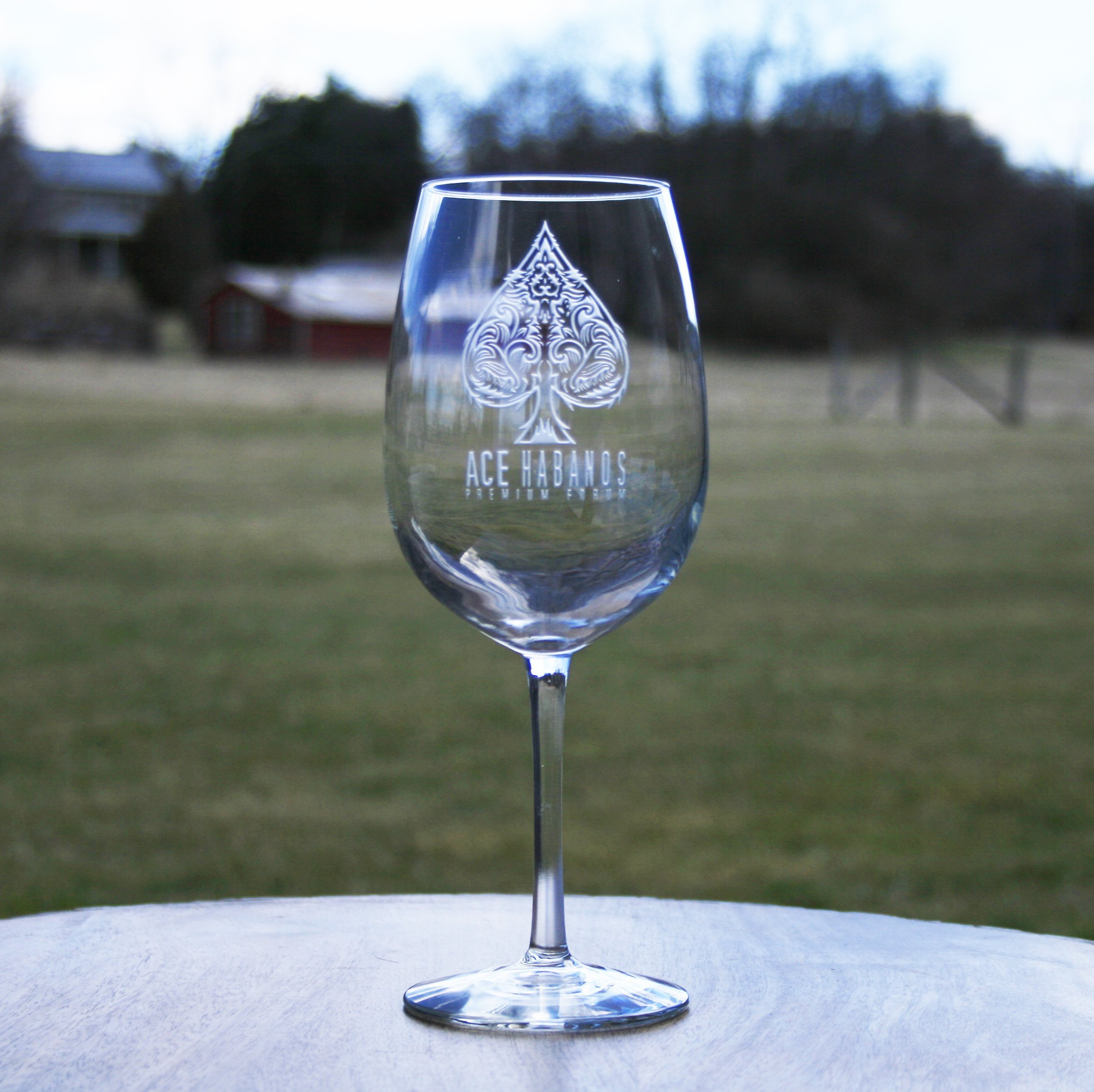 YOUR LOGO carved on 6 WINE glasses (Set of 6)
