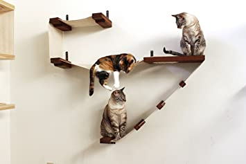amazon     catastrophicreations deluxe cat playplace   cat hammock  u0026 climbing activity center   handcrafted wall mounted cat tree   pet supplies amazon     catastrophicreations deluxe cat playplace   cat      rh   amazon