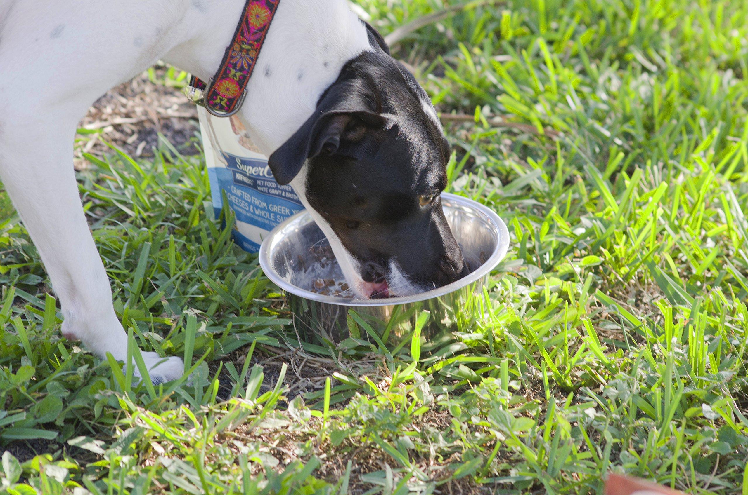 SuperGravy Bundle - Natural Dog Food Gravy Topper - Hydration Broth Food Mix - Human Grade – Kibble Seasoning for Picky Eaters – Gluten Free & Grain Free 6