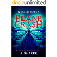 In the end, there's a plane crash: A Suspenseful Horror book cover