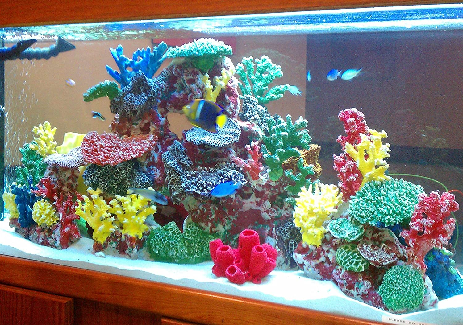 Freshwater fish aquarium accessories - Amazon Com Instant Reef Dm035 Artificial Coral Reef Aquarium Decor For Saltwater Fish Marine Fish Tanks And Freshwater Fish Aquariums Aquarium Decor