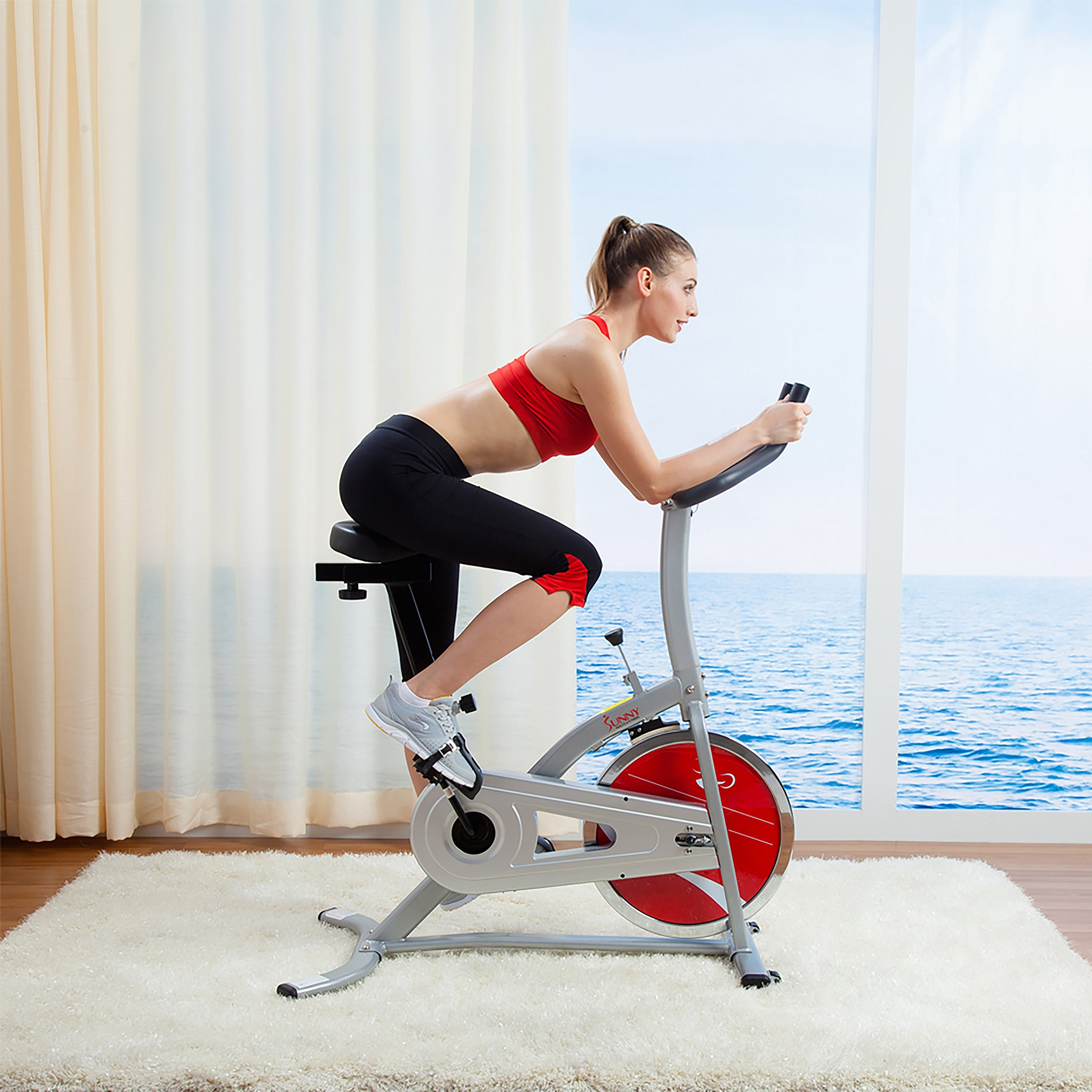 Sunny Health and Fitness Indoor Cycling Bike by Sunny Health & Fitness (Image #2)
