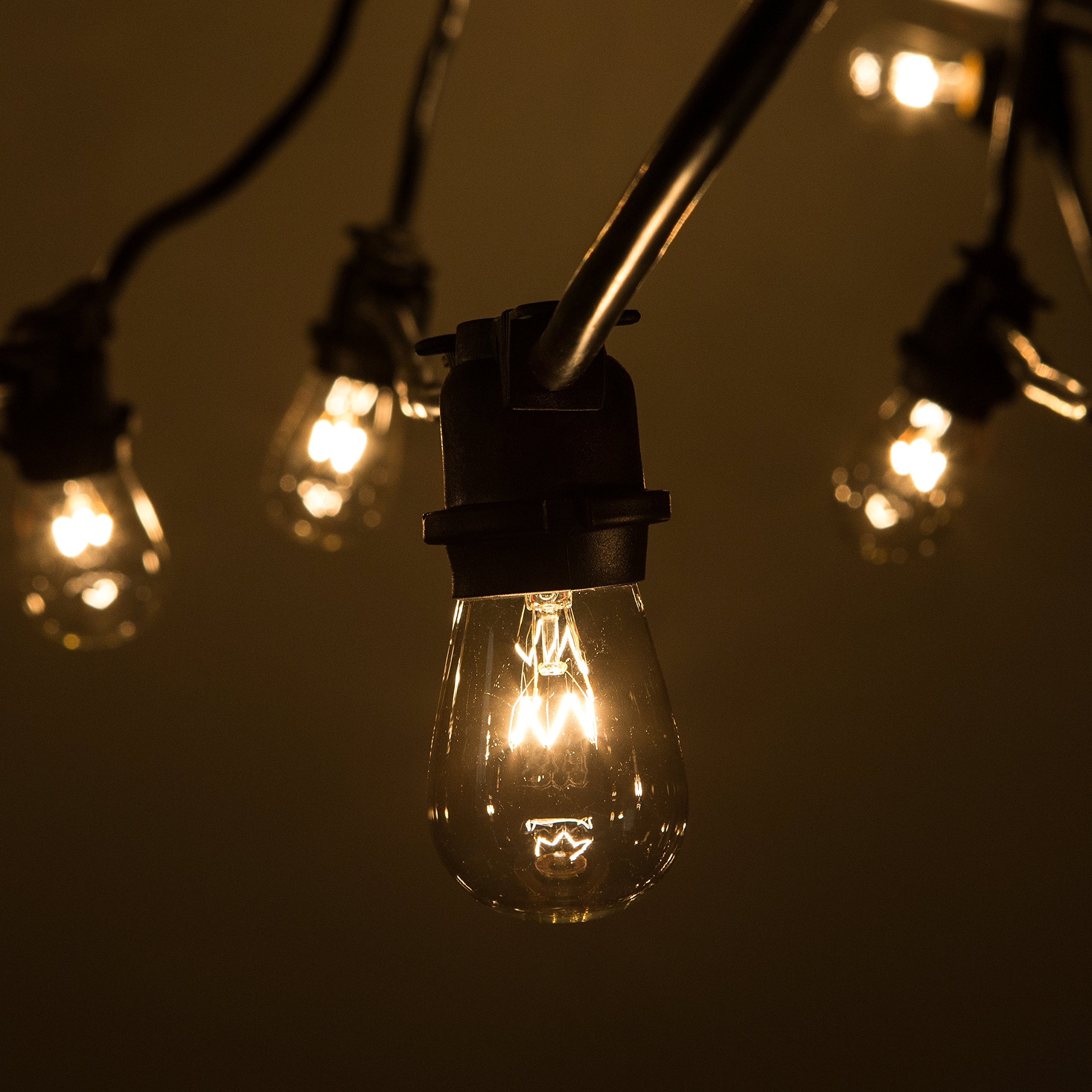 Hometown Evolution, Inc. Commercial E26 String Lights with 14 Gauge Wire (100 Foot 50 Socket, S14 11 Watt Clear Bulb)