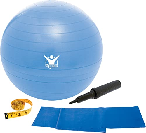 Gaiam The Biggest Loser 65cm Stability Ball Kit