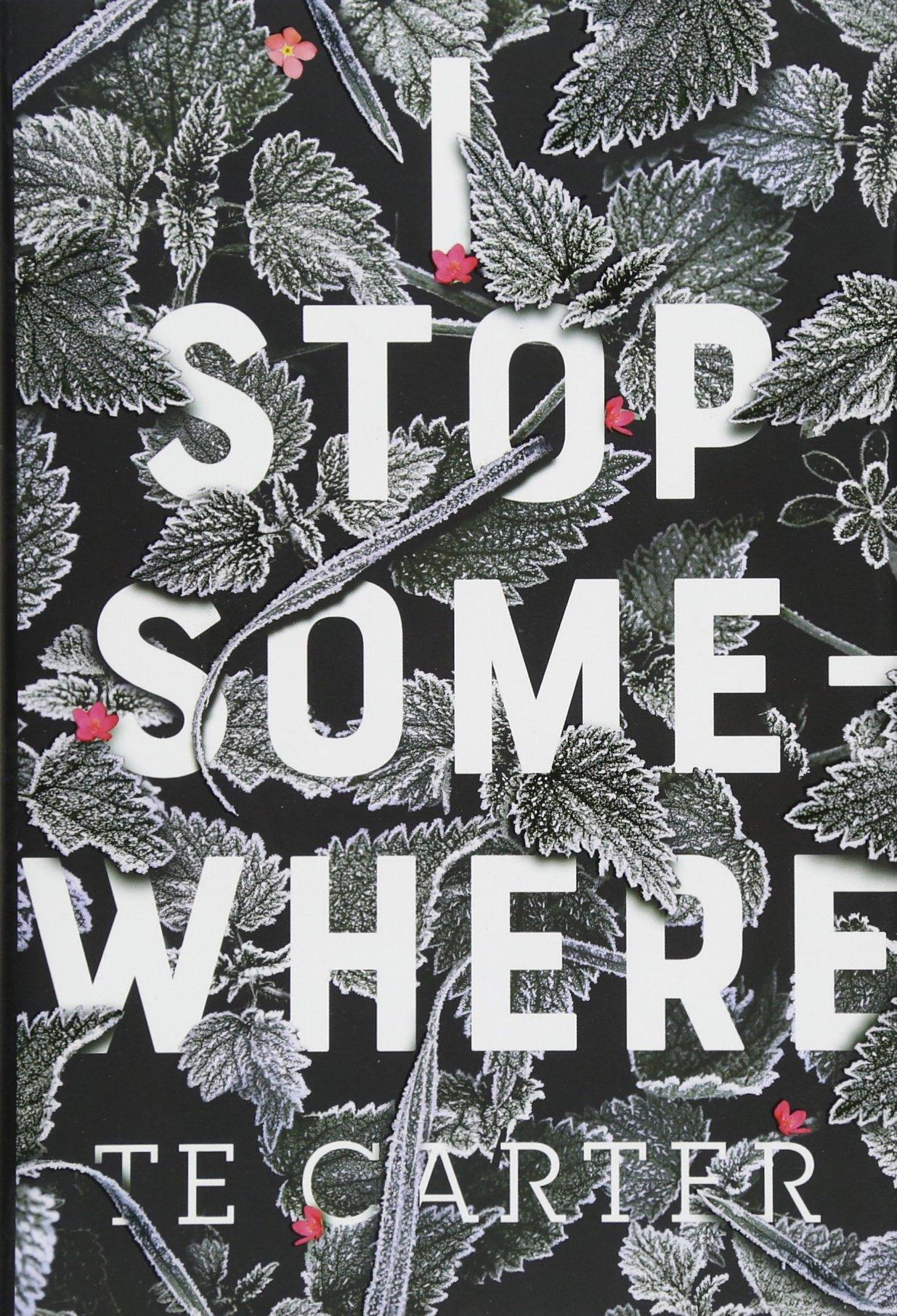 Download I Stop Somewhere pdf