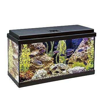 ICA KDI60 Kit Aqua-Led 60 con Filtro Interior, Negro