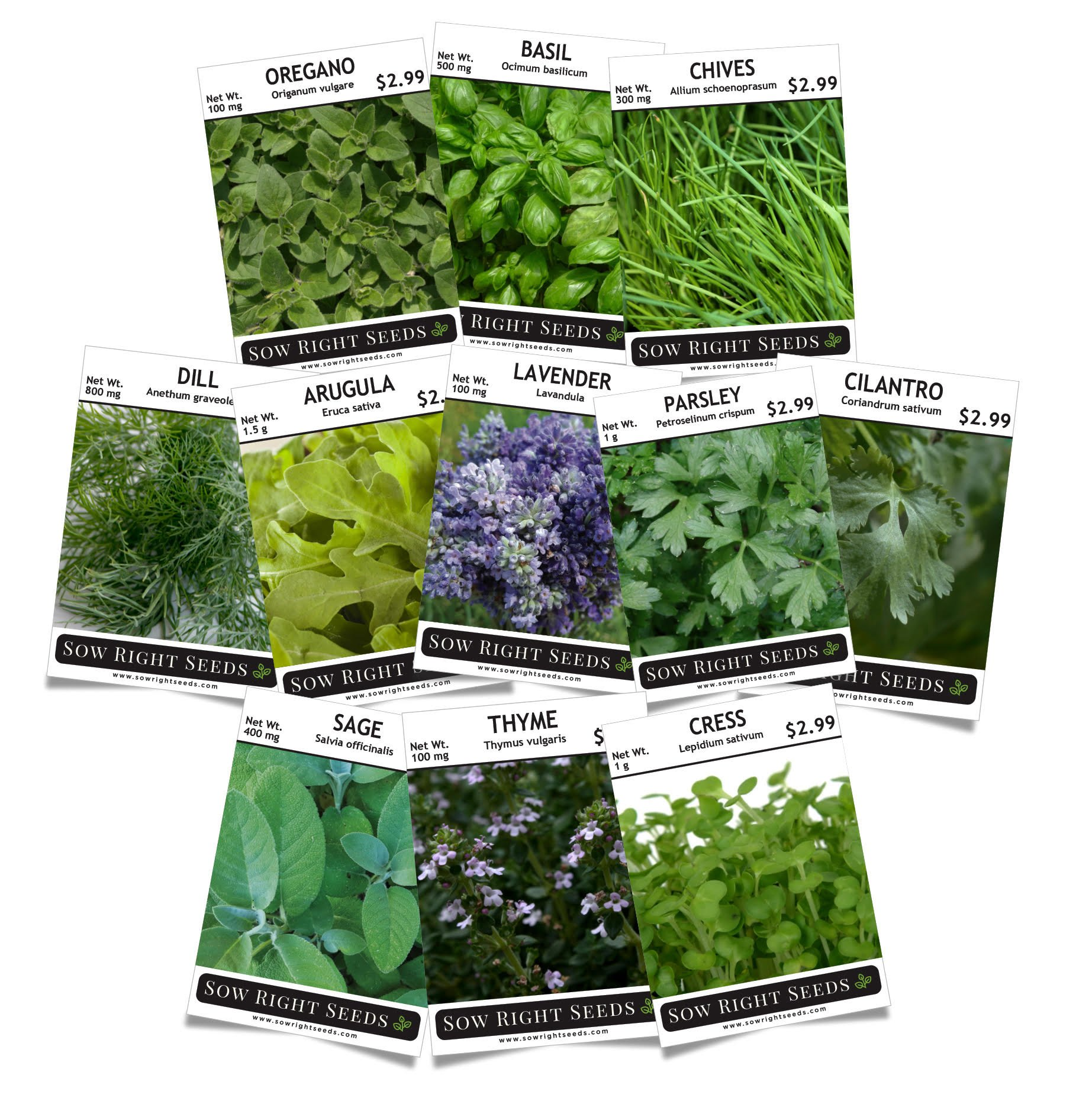 Sow Right Seeds - Herb Garden Seed Collection - Arugula, Basil, Chives, Cilantro, Cress, Dill, Lavender, Oregano, Parsley, Sage & Thyme; Non GMO Heirloom Seeds with Full Instructions for Planting