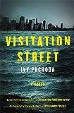Visitation Street: A Novel