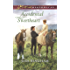 Accidental Sweetheart (The Bachelors of Aspen Valley)