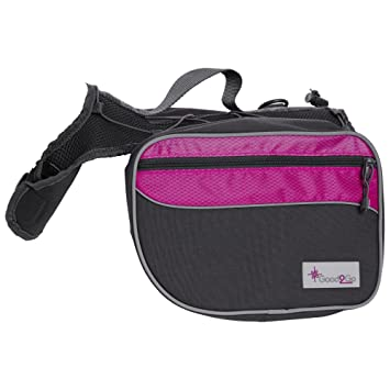 Amazon.com : Good2Go Pink Dog Backpack, X-Large, Pink / Gray : Pet ...