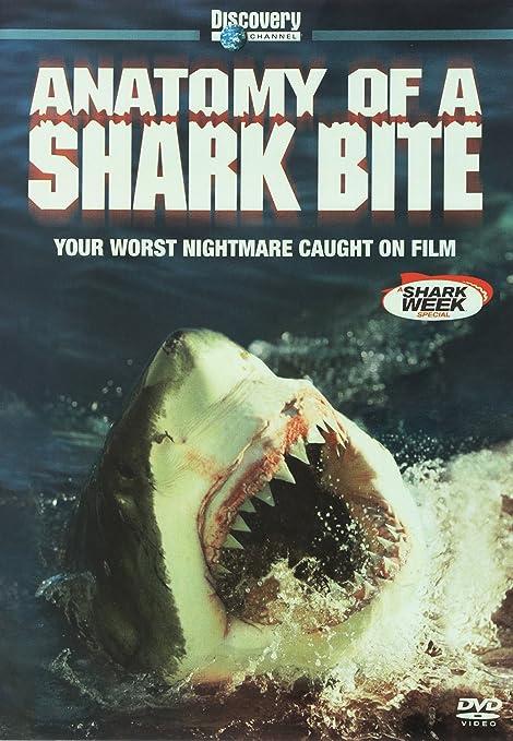 Amazon.com: Anatomy of a Shark Bite: J.V. Martin, Erich Ritter, Jim ...
