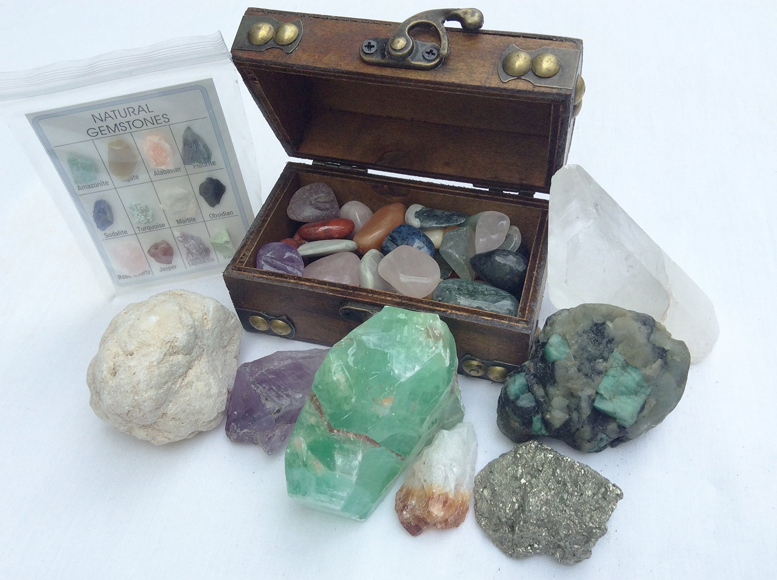DINOSAURS ROCK Mineral Collection Gift Pack w/ bonus treasure chest and ID chart - 20+ pieces Exclusive!