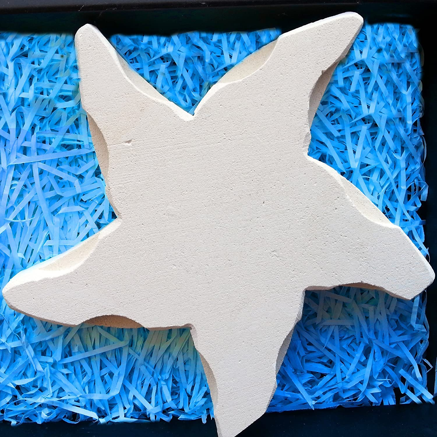 Symbol of Inspiration /& Strength Handmade in Italy Starfish With Gift Box /& Blank Message Card Gift for Him or Her Contains Fossil Fragments