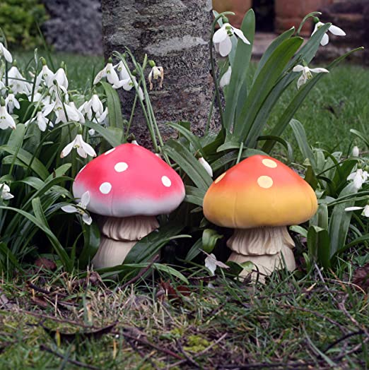 FHFY Garden Decoración de Hadas de jardín, Set of 2 Fun Fungi: Amazon.es: Jardín