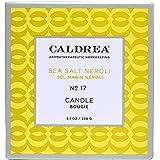 Caldrea Candle, Sea Salt Neroli, 8.1 oz
