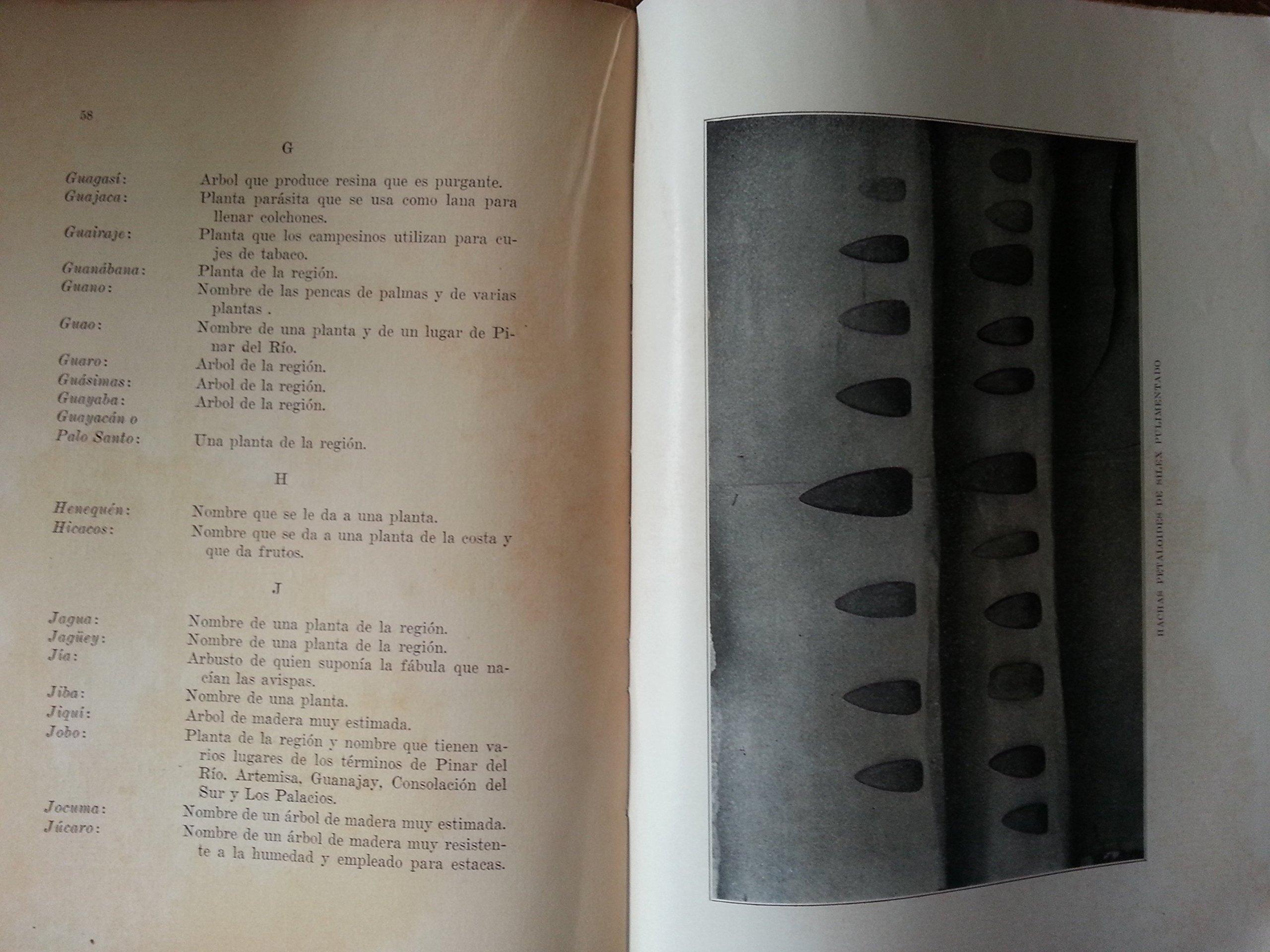 La civilizacion taina en pinar del rio.primera edicion, 1930.: pedro garcia valdes: Amazon.com: Books