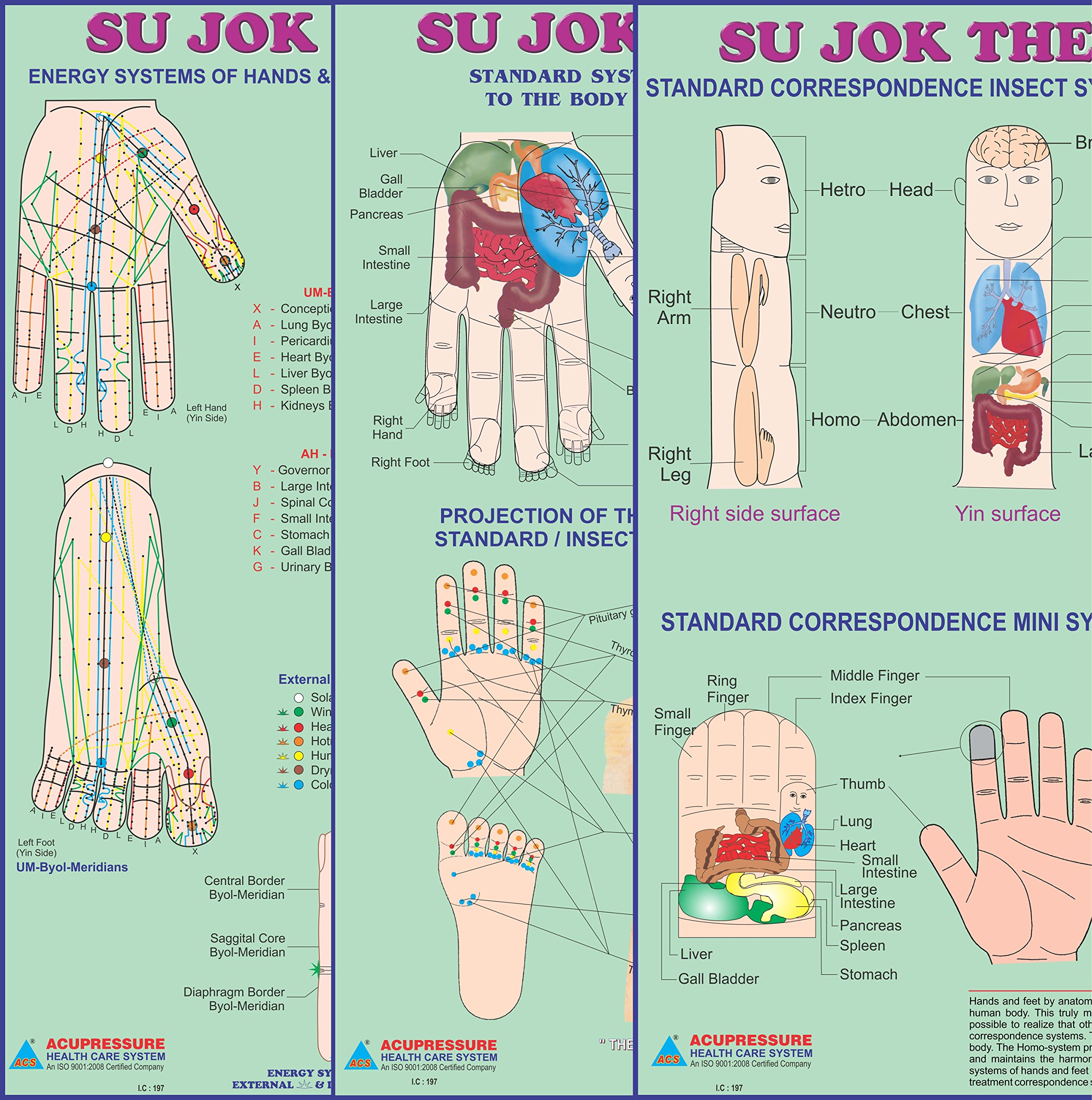 Acupressure Sujok Therapy - Acupuncture Acupressure Points