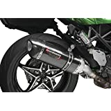 Amazon.com: 2018-2019 KAWASAKI H2 SX FRAME SLIDER SET 99994 ...