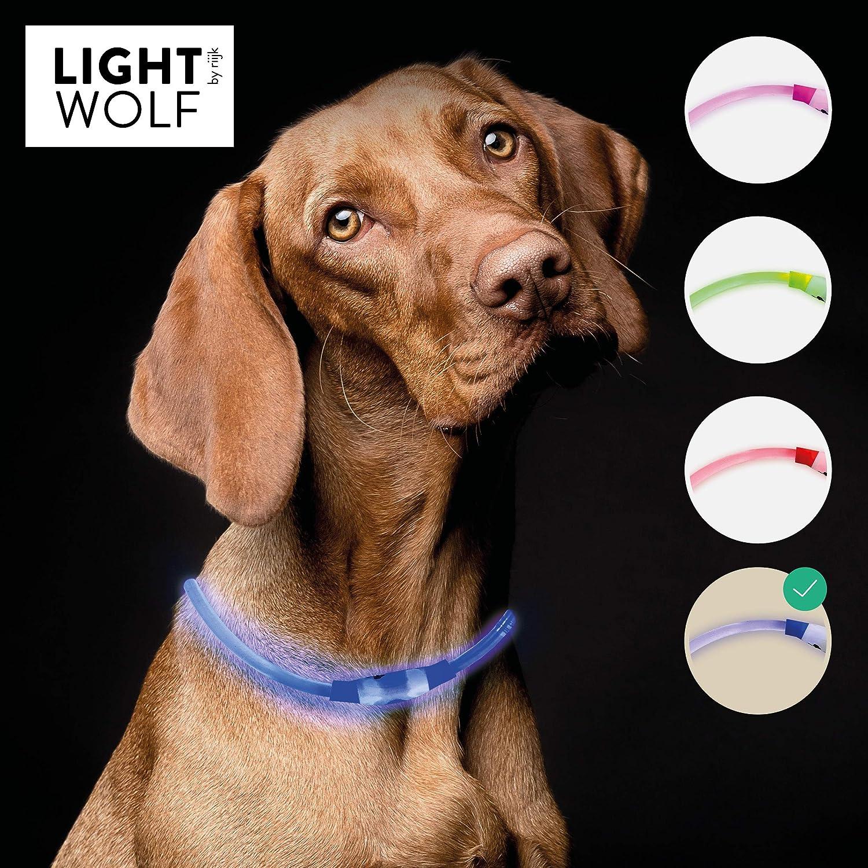riijk - Collar con luz LED para Perros y Gatos, Resistente a la ...