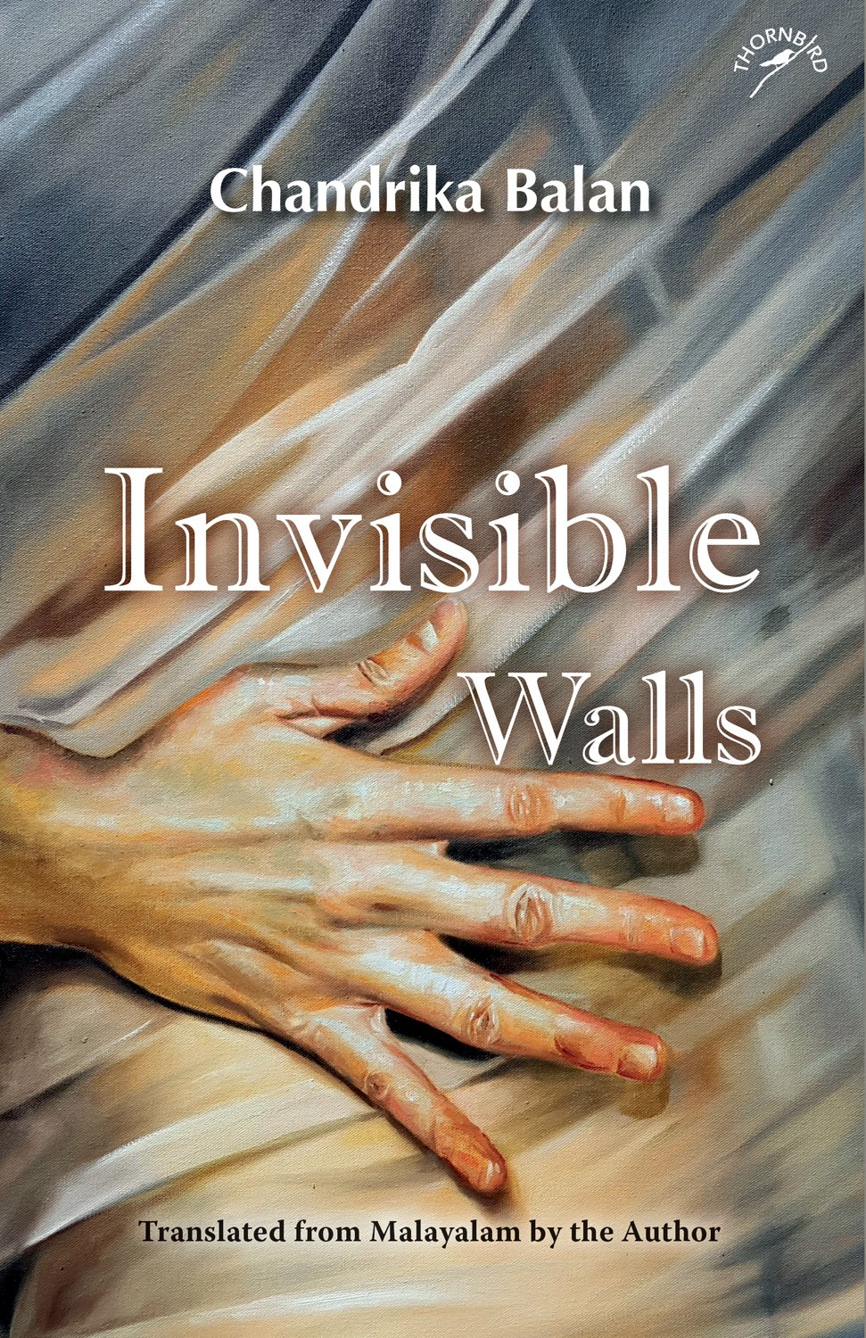 Image result for invisible walls niyogi