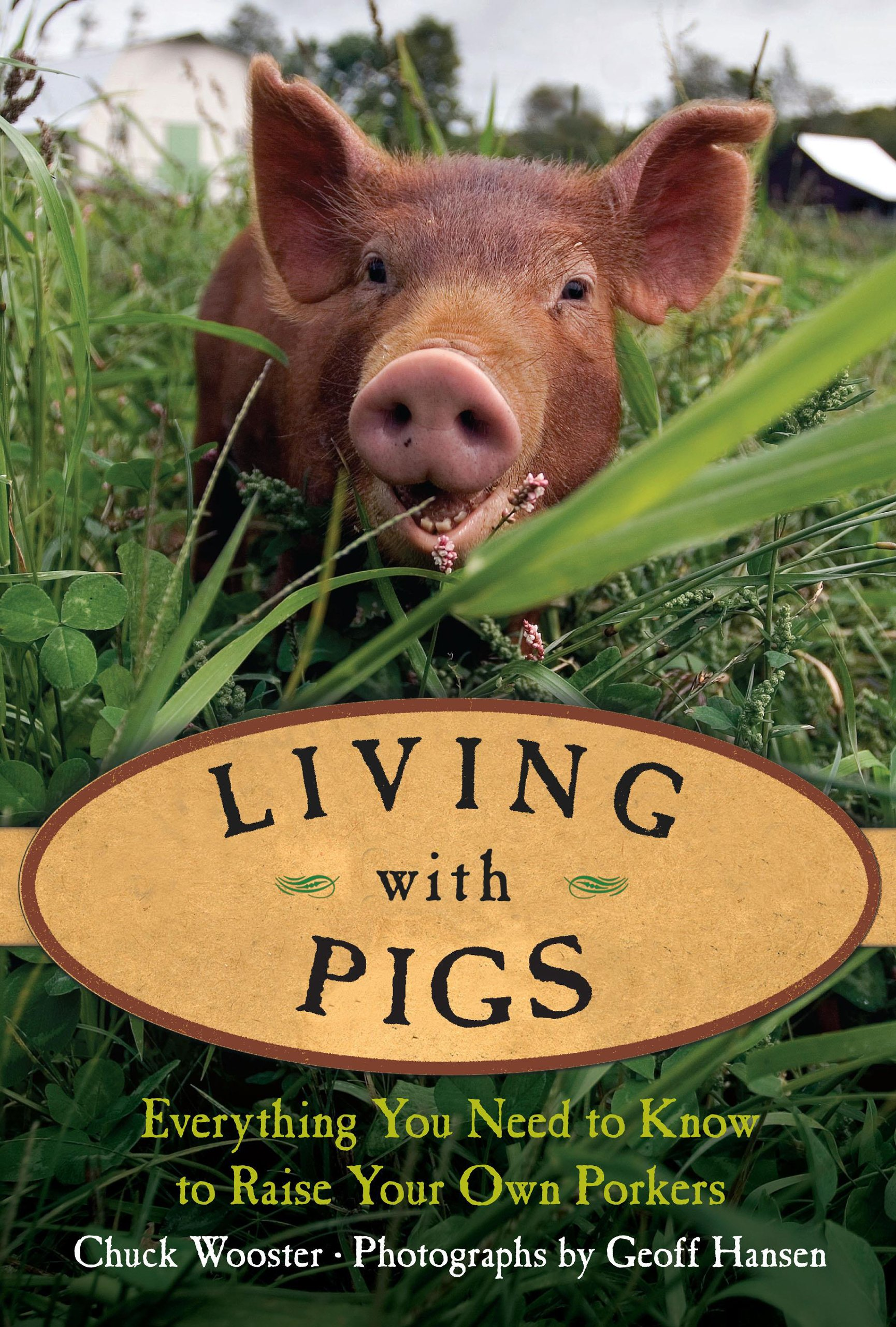 Living with Pigs: Everything You Need to Know to Raise Your
