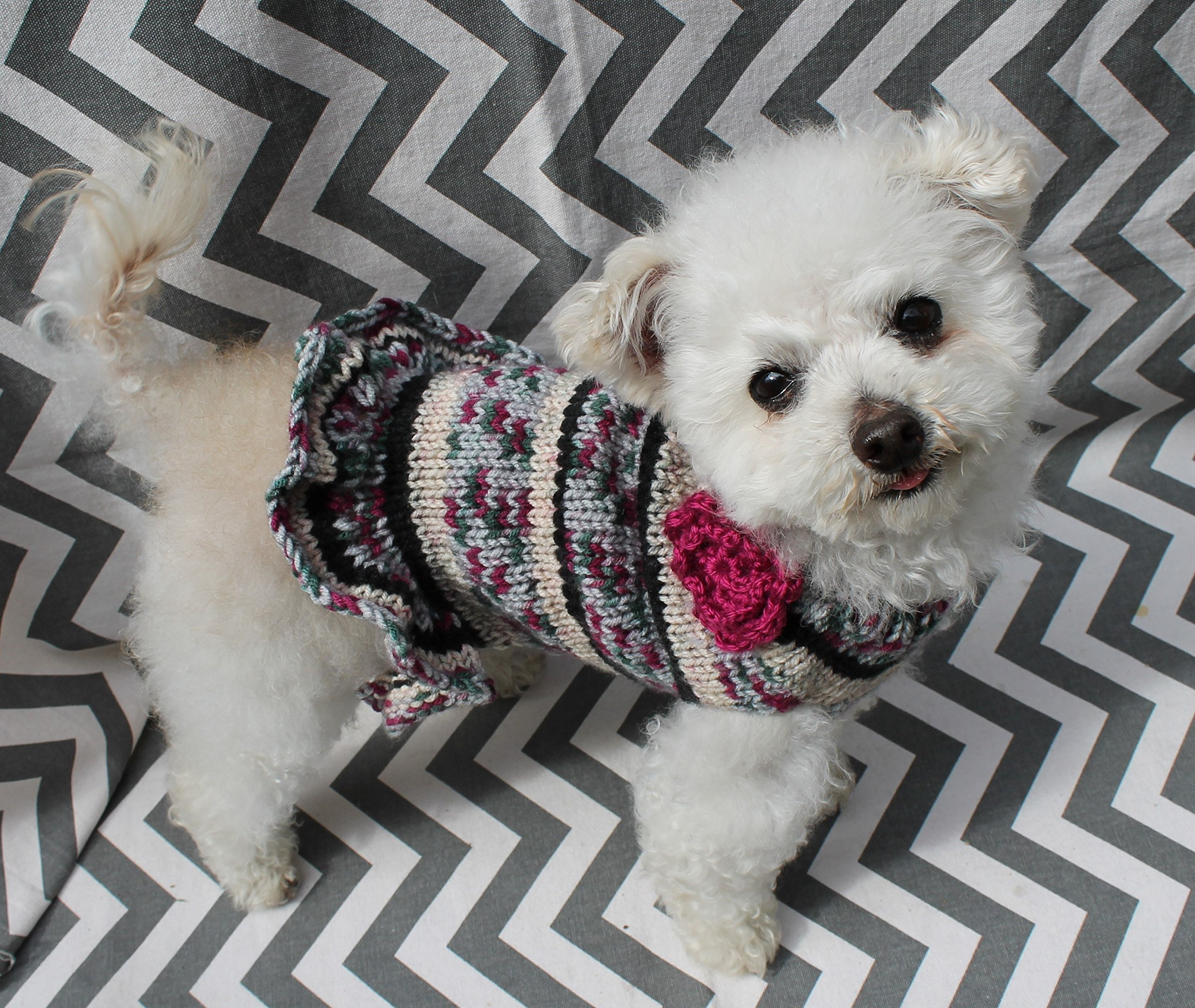 Rustic Dog Puppy Sweater Dress XS/S 4 to 6 Lbs with Ruffle Yorkie Pomeranian Maltese Toy Poodle Teacup Maltipoo cockapoo Puppy Bichon