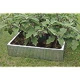 Hansons Garden Hochbeet für Garten, verzinkt