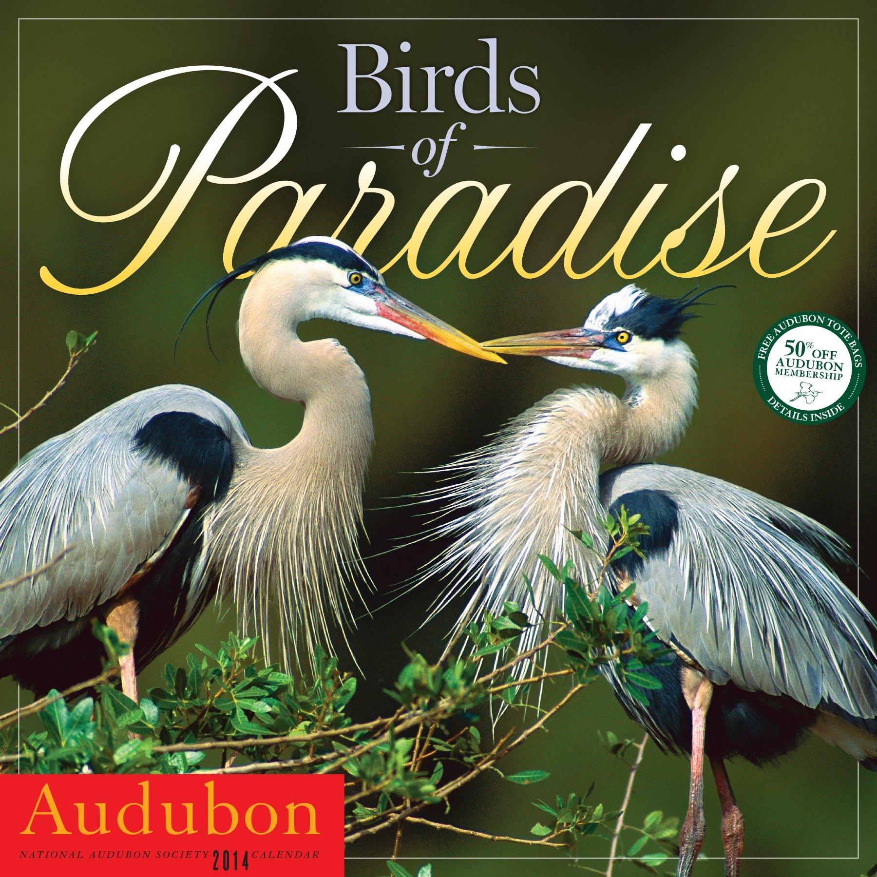 Audubon Birds of Paradise Wall Calendar 2014 ebook