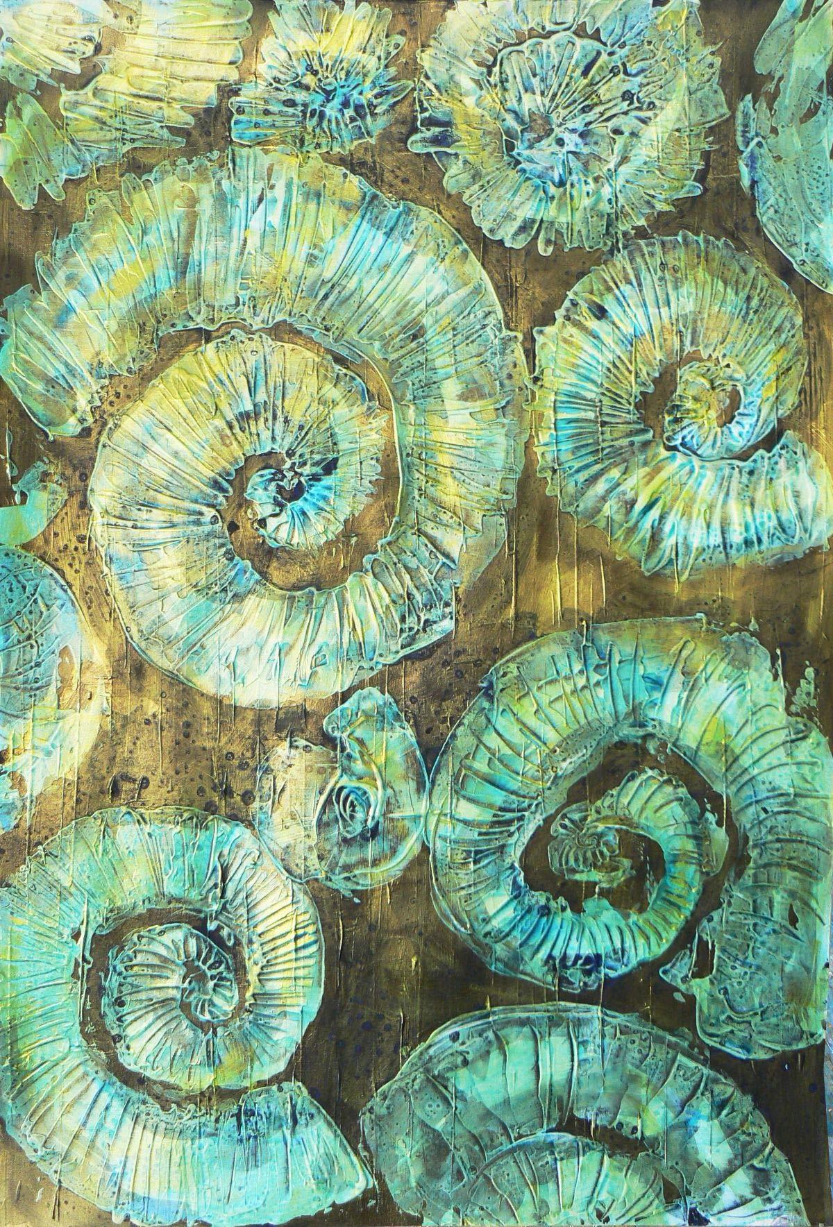 Ammonite 5 by