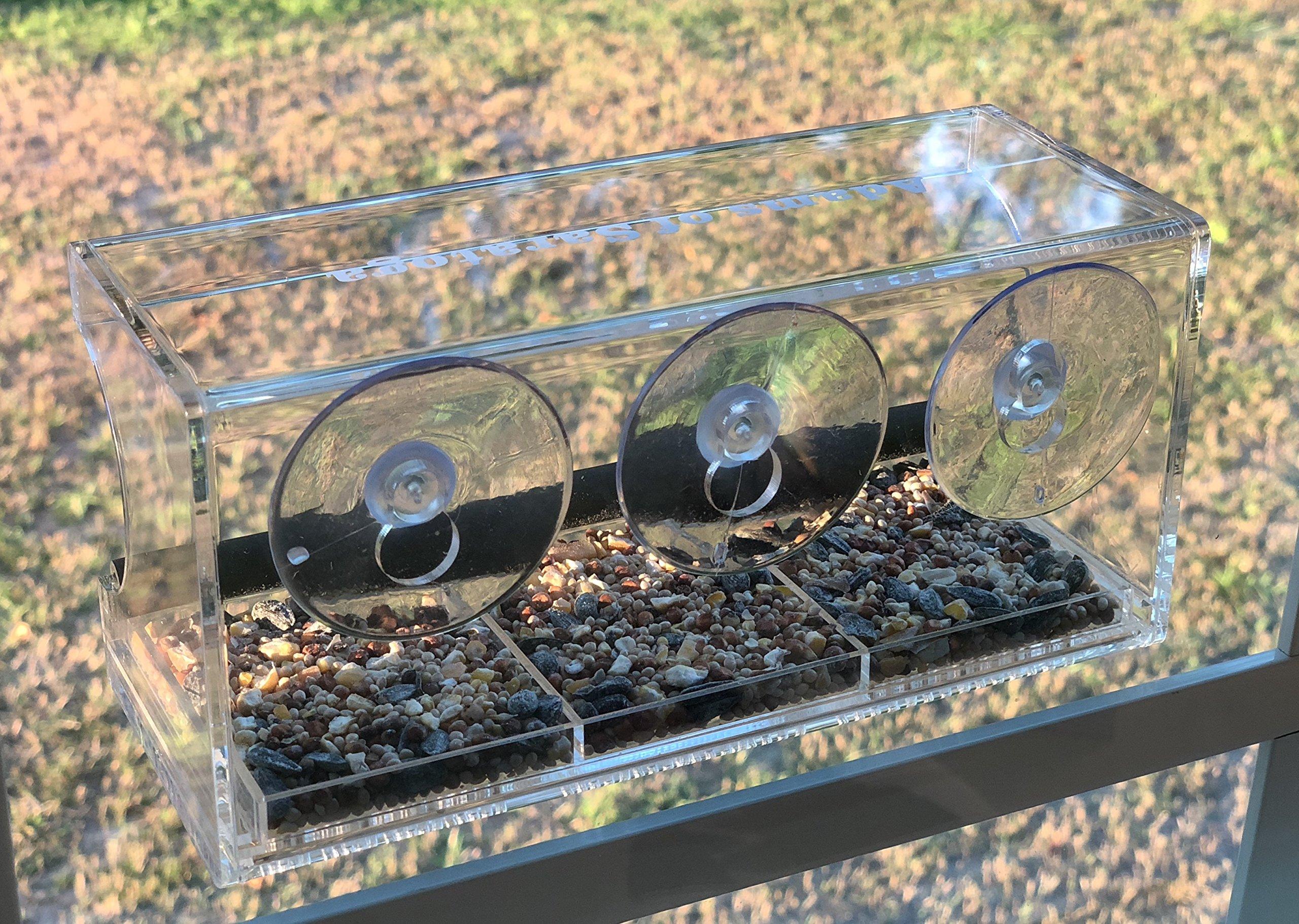 Adams of Saratoga - WINDOW BIRD FEEDER & FREE SEED - Strong Suction Cups, Seed Tray, Outdoor Bird Feeders for Wild Birds, Finch, Cardinal, Bluebird, Large Outside Birdhouse, Drain Holes