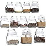 Pure Source India Spice Jar, Glass Container, with Air Tight Lid, Set of 12 Pcs - Transparent