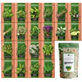 20 Culinary Herb Seed Vault - Heirloom and Non GMO - Seeds for Planting for Indoor or Outdoor Herbs Garden, Basil, Cilantro,