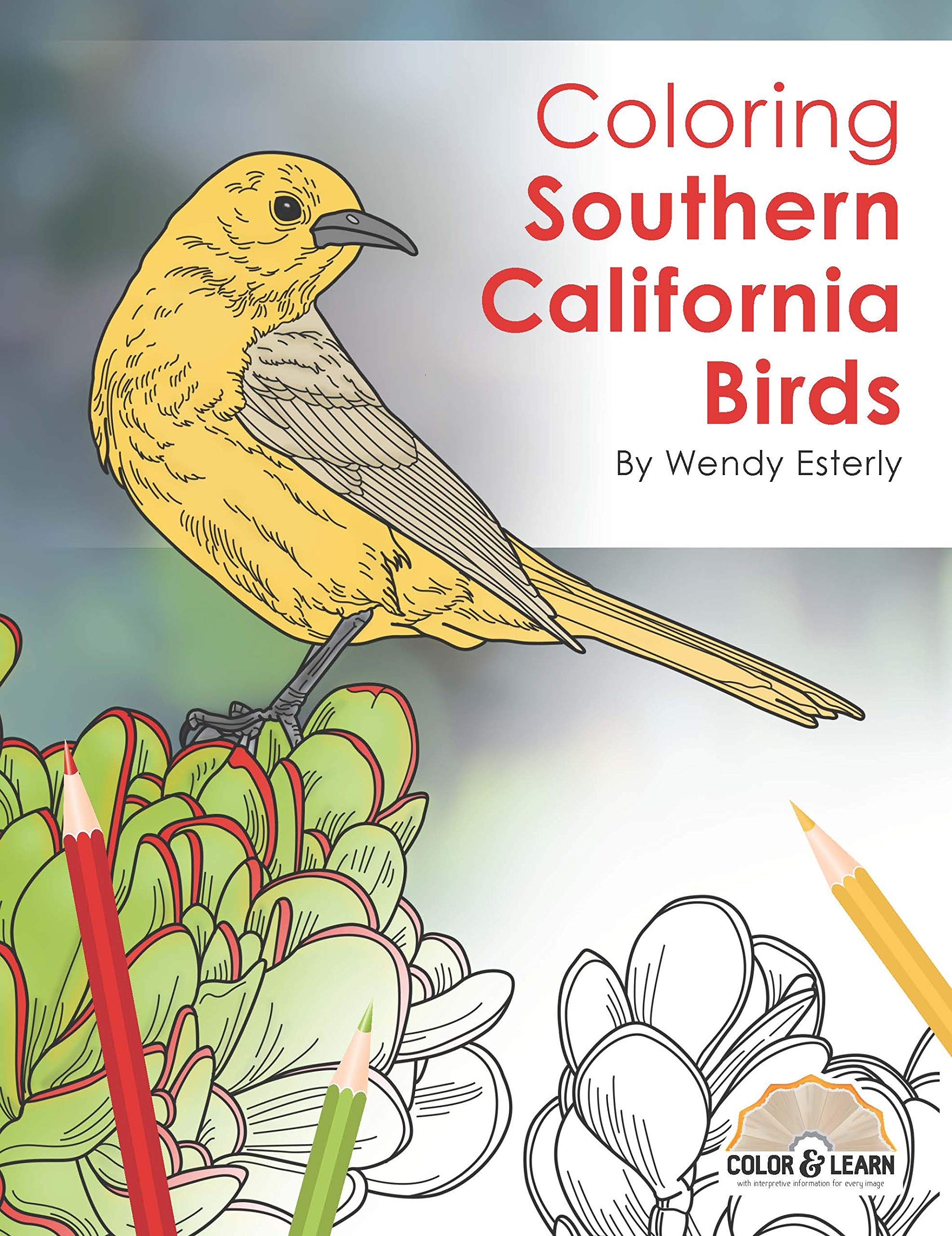 Amazon.com: Coloring Southern California Birds (Color and Learn ...
