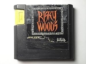Risky Woods - Sega Genesis