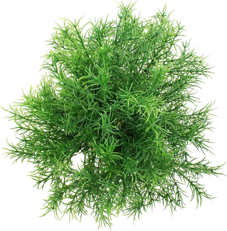 artplants.de Petite Plante Verte Artificielle Asparagus dans Un Pot d/écoratif trait/é Anti-UV 25cm/- Plante en Pot asperge /à Fleur