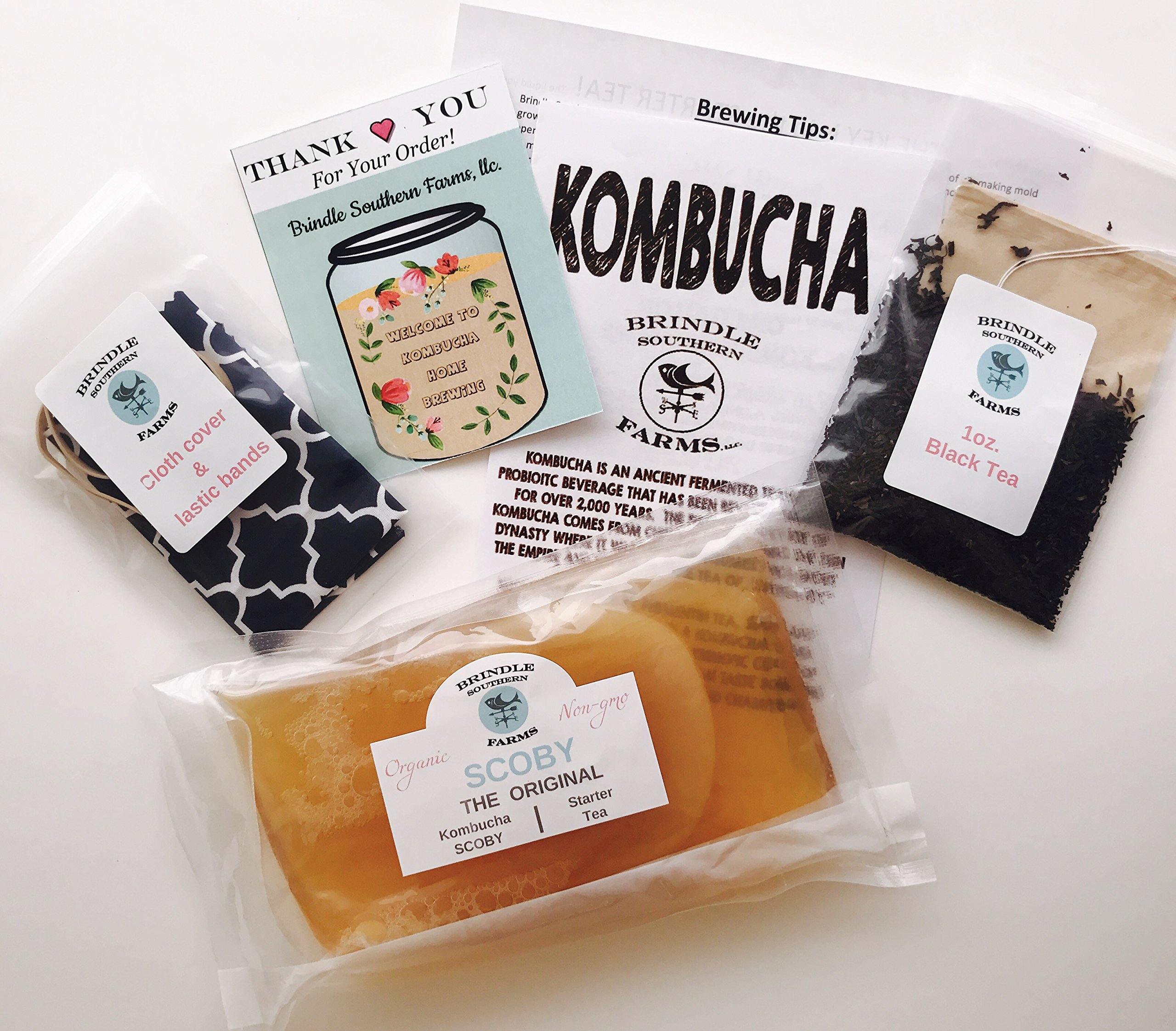 Brindle Southern Farms One Gallon Premium Kombucha SCOBY & Black Tea Brewing Set